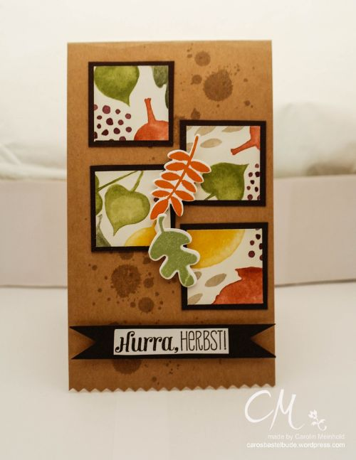 Caros Bastelbude: Herbstkarte mit Stampin' Up!, DSP Bunter Herbst, Herbstfarben, Fall Fest, One Sheet Wonder