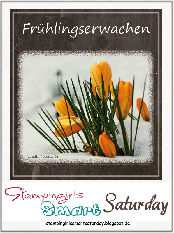 Caros Bastelbude: Stampingirls Smart Saturday, Frühlingserwachen, So froh, Stampin' Up!