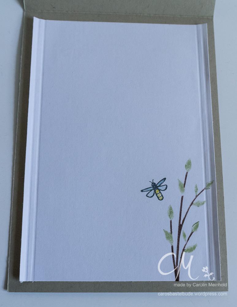 Schüttelkarte Frosch im Glas, Love you Lots, Glasklare Grüße #CarosBastelbude carosbastelbude.wordpress.com