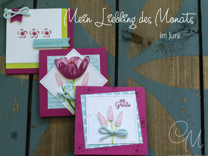 Mein Liebling des Monats im Juni. Kleine Kärtchen mit 3 x 3 Inch gestaltet mit dem Set Tranquil Tulips #CarosBastelbude