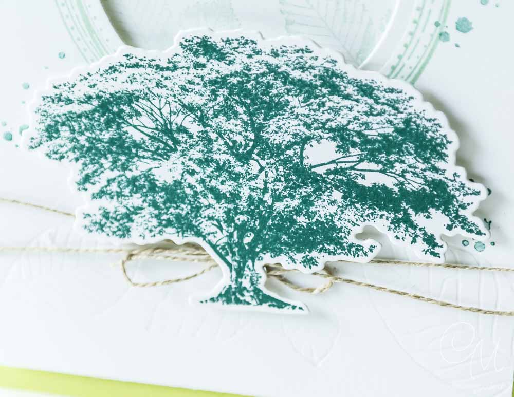 PapierTapir & Friends Bloghop zum Jahreskatalog 2018, Grußkarte gestaltet mit den Stempelsets Kraft der Natur und Swirly Frames von Stampin' Up! #CarosBastelbude [annual catalogue 2018]