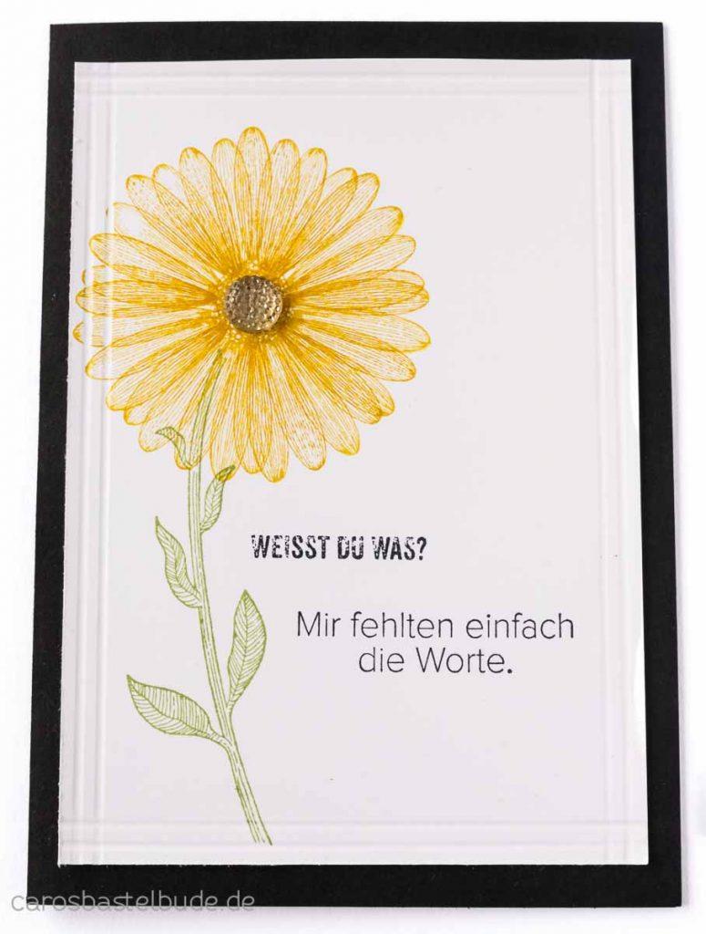 Grußkarte - Trauerkarte oder Entschuldigung gestaltet mit den neuen Stampin' Up! Stempelsets Wenn die Worte fehlen und Gänseblümchenglück aus dem Jahreskatalog 2019. Bloghop zur Prize Patrol Nr. 2
