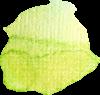kleckshellgrün